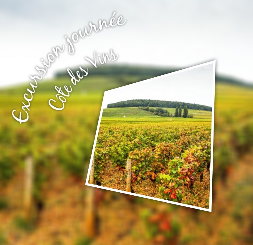 excursion-cote-vins